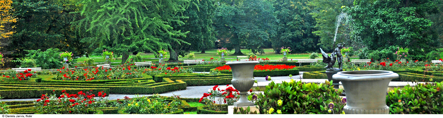 warsaw palace garden green and red flowers