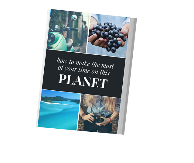 making the most of your time on this planet ebook cover (1).png